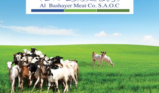 Al Bashayer Meat Company announces exclusive Eid order pre-booking for their first batch of livestock