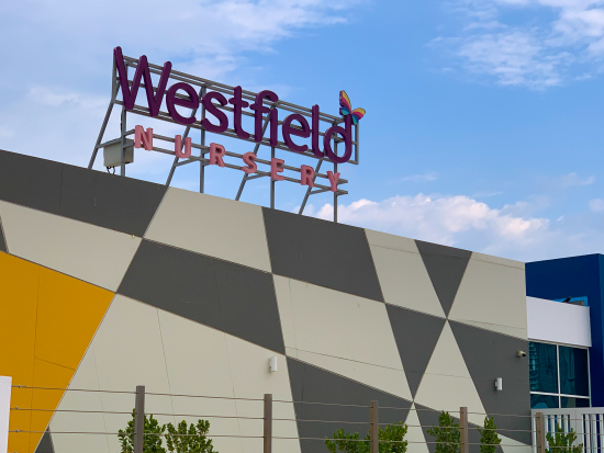 westfield-nursery-near-citywalk-al-wasl.jpg