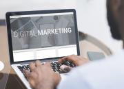 Mint Stalk Insights - The Future of Digital Marketing in the UAE